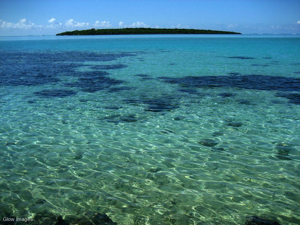Île aux Aigrettes Nature Reserve