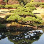 Tokyo- Shinjuku Gyoen Nationalgarten