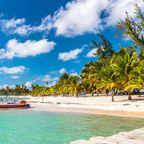 Sandstrände wie den auf Saona Island gibt es zahlreiche in der Dominikanischen Republik