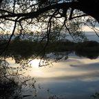 Sonnenunergang über einem See im Nationalpark Desna-Stara Huta