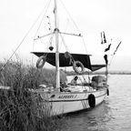 Am Ufer des Manavgat Flußes