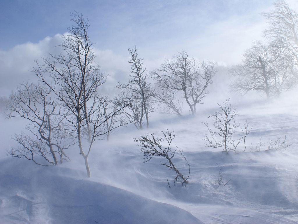 Wunderschöne Winterlandschaft nach Sturm