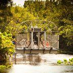 Alligatoren auf der Spur: Der Everglades Nationalpark ist ein einmaliges Naturerlebnis