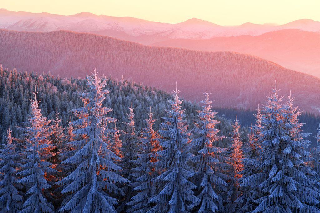 Im Winter siegt die Finsternis über das Licht