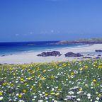 Zurück zur Übersicht Schottland - Westküste & Hebriden