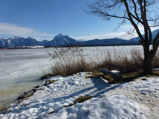 Winterlandschaft am Hopfensee, Allgäu