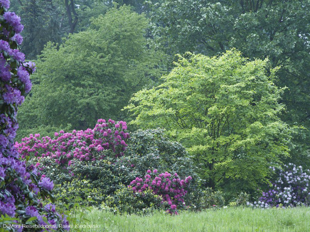 Jardin Botanique National de Belgique