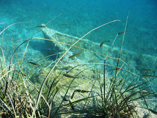 Boot unter Wasser