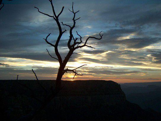 Abend am Grand Canyon