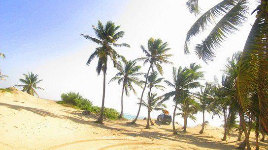 Roadtrip nach Punta Allen