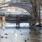 Kanal am Schloss Nymphenburg im Winter