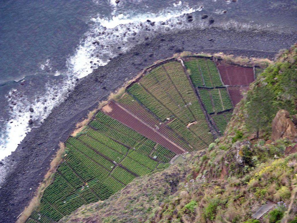 Madeira Klippe