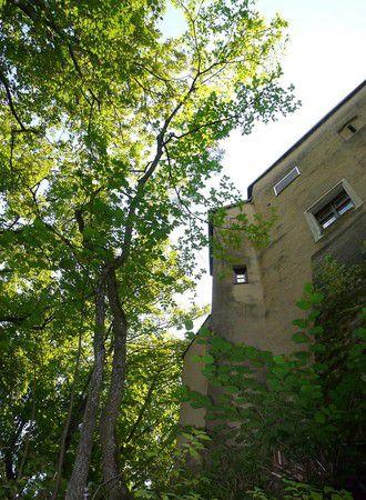 Blick zur Burg vom Fußweg aus