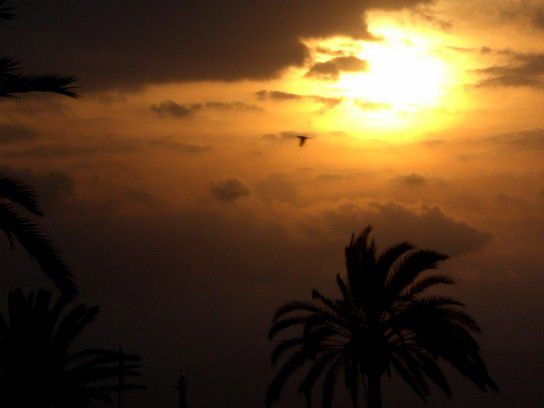 Mallorca bei Sonnenuntergang-Stimmung