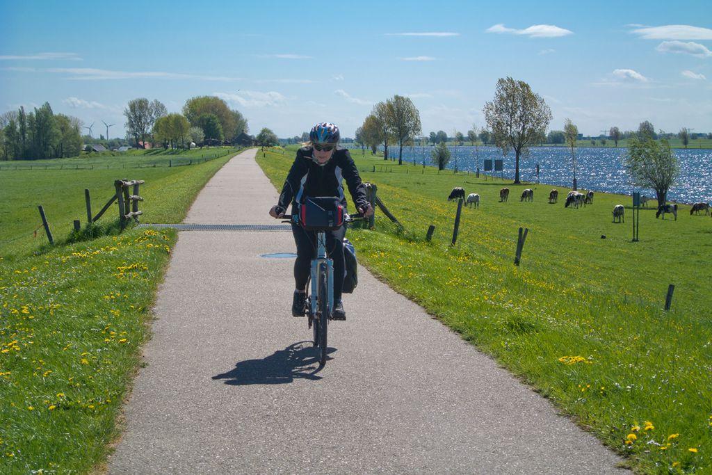 Bloss nicht: Radfahrer ignorieren