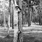 Liebe im Urwald