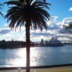 Harbour Bridge und Opera House in Sydney