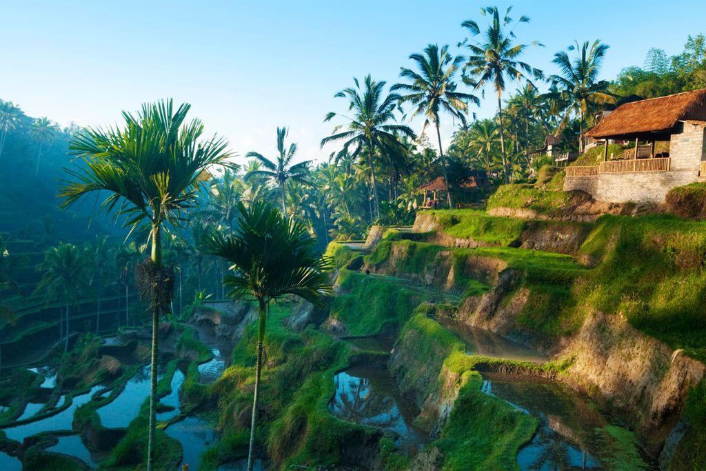 Bali und die Nachbarinsel Lombok bieten Sommerreisenden faszinierende Eindrücke.