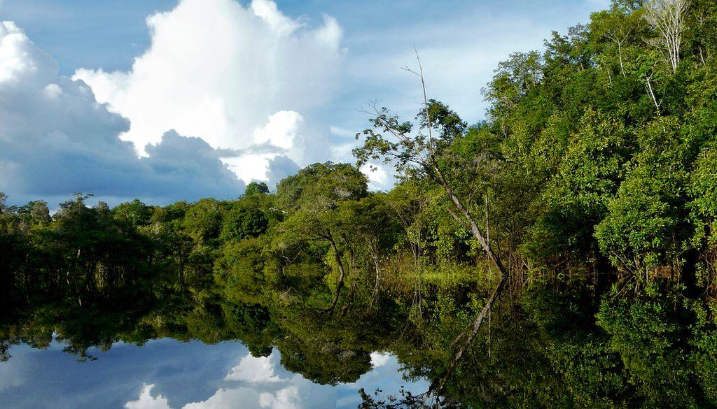 In Brasilien, Peru oder Ecuador vom Boot aus den Amazonas erkunden