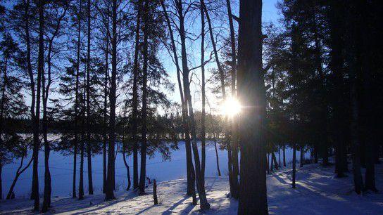 Umeå im Morgenlicht