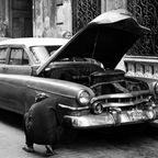 Der Mechaniker von Kuba
