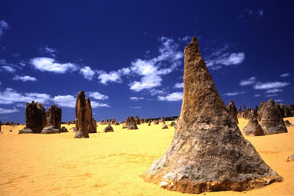 Australien: wohlgeformte Kalksteinsäulen in der Nähe von Perth