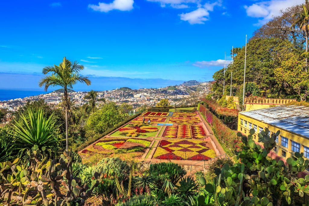 Top 10 Sehenswürdigkeiten in Portugal: Madeira