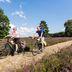 Fahrradtour im Naturschutzgebiet