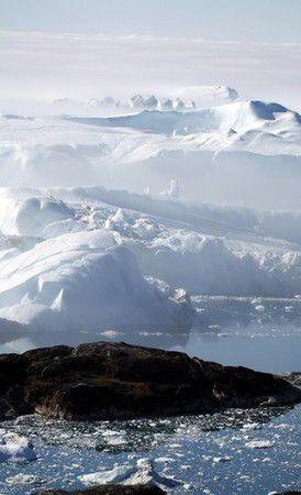 Eisberge im Nebel im Kangia Eisfjord