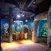 Sylt-Aquarium