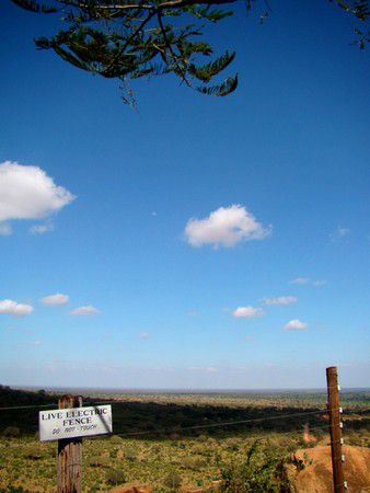Blick auf den Tsavo Ost Nationalpark