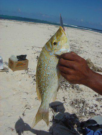 stolzer Fischfang