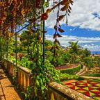 Der Botanische Garten Funchal auf Madeira bietet zahlreiche exotische Pflanzen.