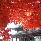Zojoji-Tempel Tokio