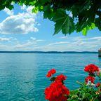 Zurück zur Bilderübersicht Bodensee