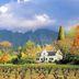 Weingut bei Franschhoek