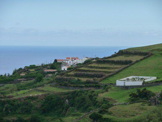 Cedros, Azoren