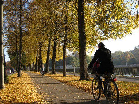 Herbstradeln