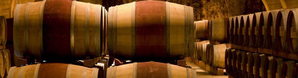 Toskana und Wein, das gehört zusammen: Seit Jahrtausenden werden in der Region erstklassige Weine produziert.